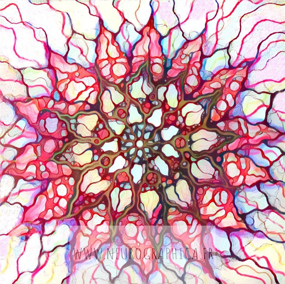 Neuro Lotus